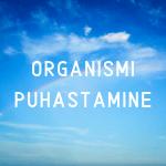 Organismi puhastamine